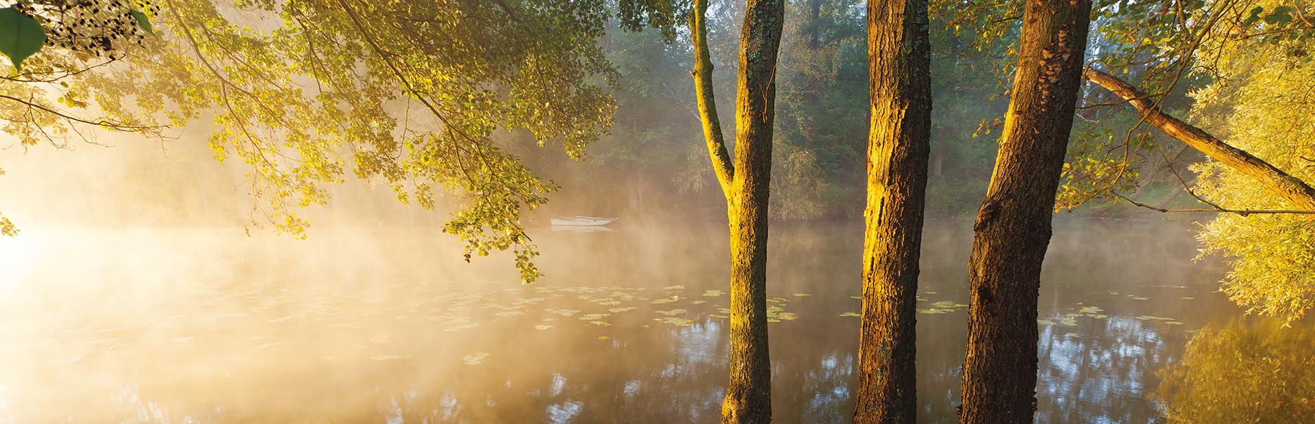Małe jeziorko od strony lasu podczas wschodu słońca, nad którym unoszą się promienie słońca  mała mgła i szadź poranka. Przy brzegu trzy duże drzewa a na wodzie po drugiej stronie brzegu łódka.