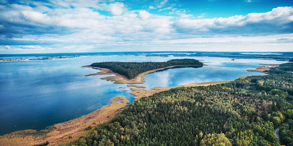 Zdjęcie z lotu ptaka przedstawia panoramę jeziora, brzegi jeziora porośnięte trzciną wodną a po środku jeziora wyłania się wyspa porośnięta lasem.