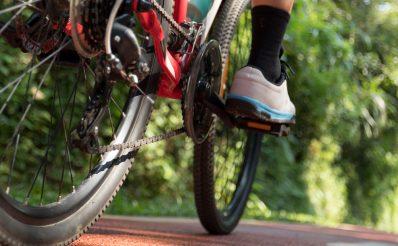 Tył roweru i prawa noga rowerzysty jadącego utwardzoną ścieżką  rowerową w lesie.