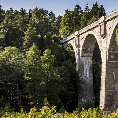 Zdjęcie przedstawia zbliżenie wiaduktu kolejowego w Stańczykach, gdzie słońce odbija się od betonowych filarów. Dookoła rośnie las.
