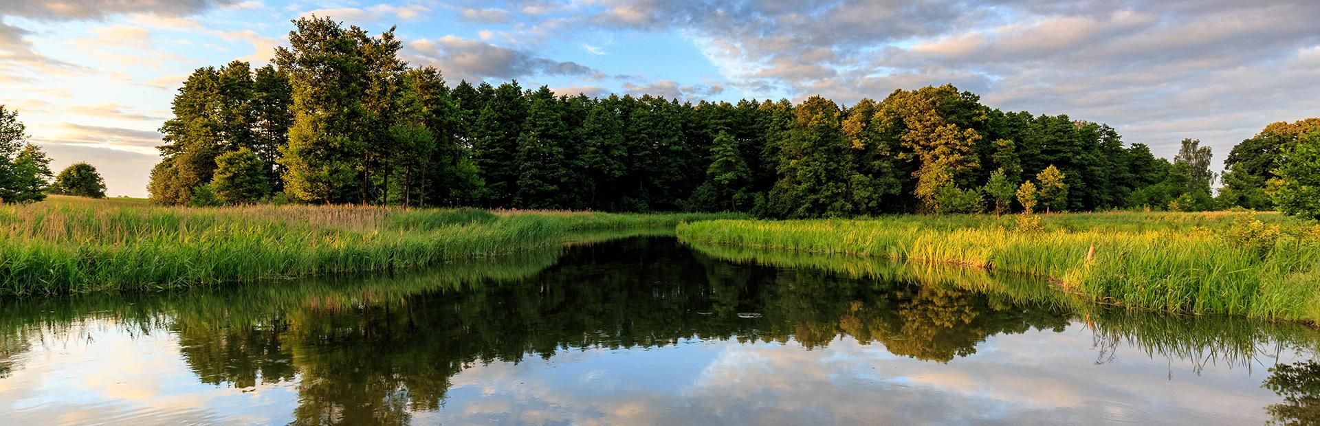 Zdjęcie przedstawia spokojną rzekę Krutynię w czasie zachodu słońca, W rzece odbijają się trawy i drzewa.