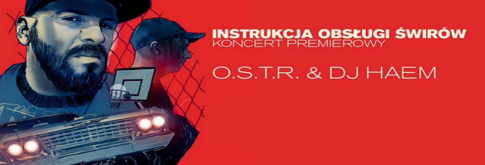 Zdjęcie - plakat na którym jest widoczna postać muzyka przerobiona na formę grafiki postaciowej. Tło plakatu czerwone z napisami zapraszającymi na koncert.