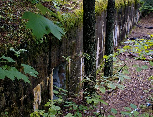 Porośnięty mchem fragment muru bunkru z II Wojny Światowej - należący do fortyfikacji obronnych, zlokalizowany w lasach mazurskich - Wydminy.