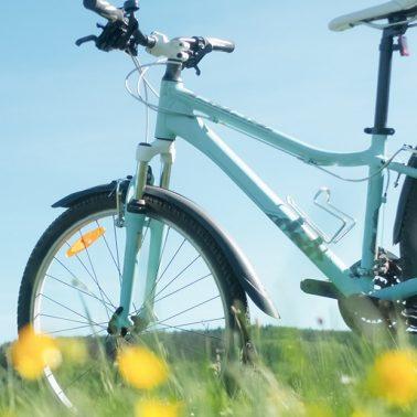 Zdjęcie ilustracja przedstawiające rower wycieczkowy na łące.