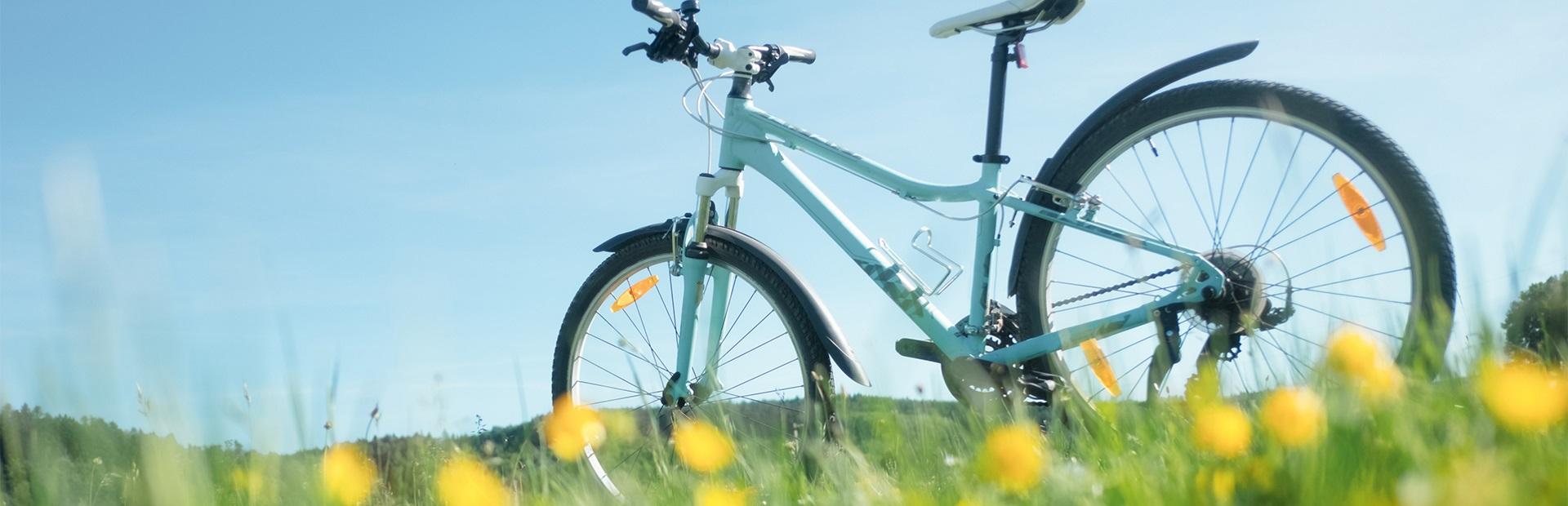 Stojący samotnie rower wycieczkowy na mazurskiej łące  wśród żółtych kwiatów.