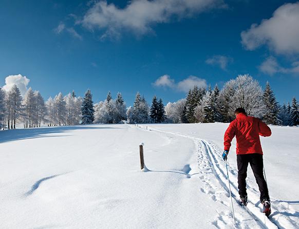 Samotny narciarz na nartach biegowych, zmierzający w stronę lasu, pokonujący wyznaczoną trasę biegową.