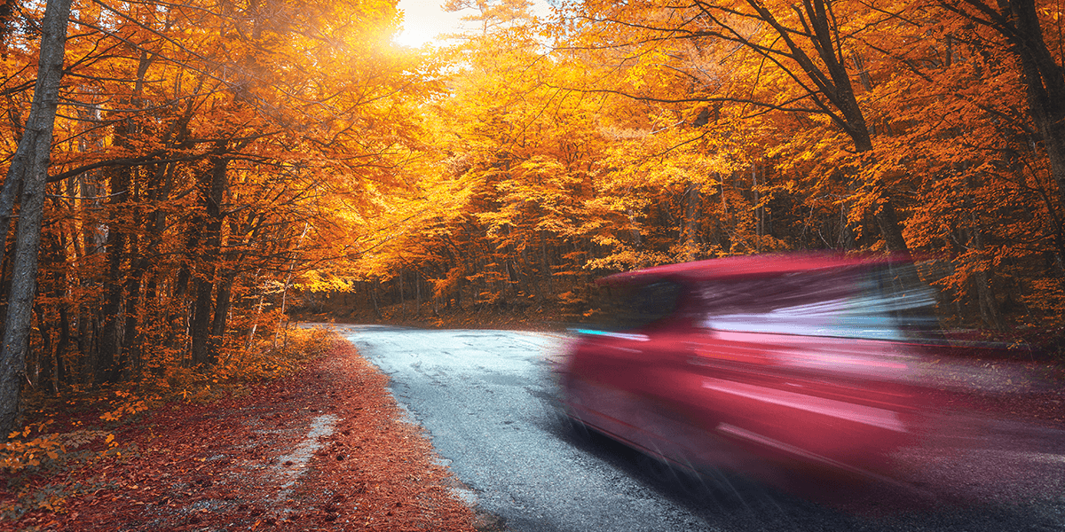 Leśna asfaltowa droga, pokryta żółtymi jesiennymi liśćmi na której jedzie auto tak szybko, że sylwetka samochodu jest bardzo rozmazana.