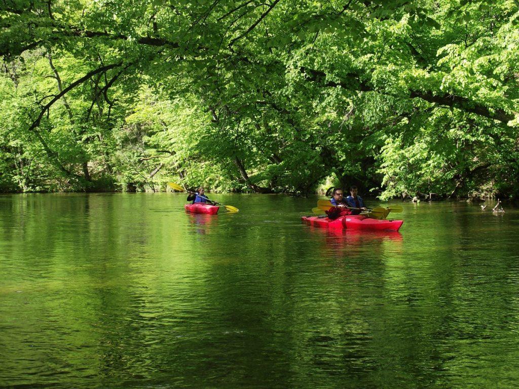 Spływ Rzeką Krutynią. Na zdjęciu widzimy spływ trzech kajakarzy płynących w jednoosobowych czerwonych kajakach.