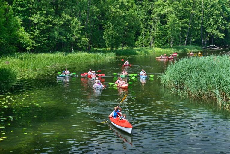 Zdjęcie przedstawia kajakowy spływ rzeką Krutynią, po bokach której rosną wysokie trawy. Na zdjęciu ponad dwanaście dwuosobowych kajaków płynących obok siebie.