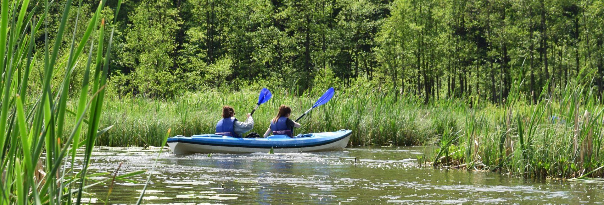 Spływ rzeką Dajną. Na zdjęciu niebieski kajak z dwiema wioślarkami pokonujący zakręt na rzece i wpływający nurtem rzeki do następnej odnogi Dajny.