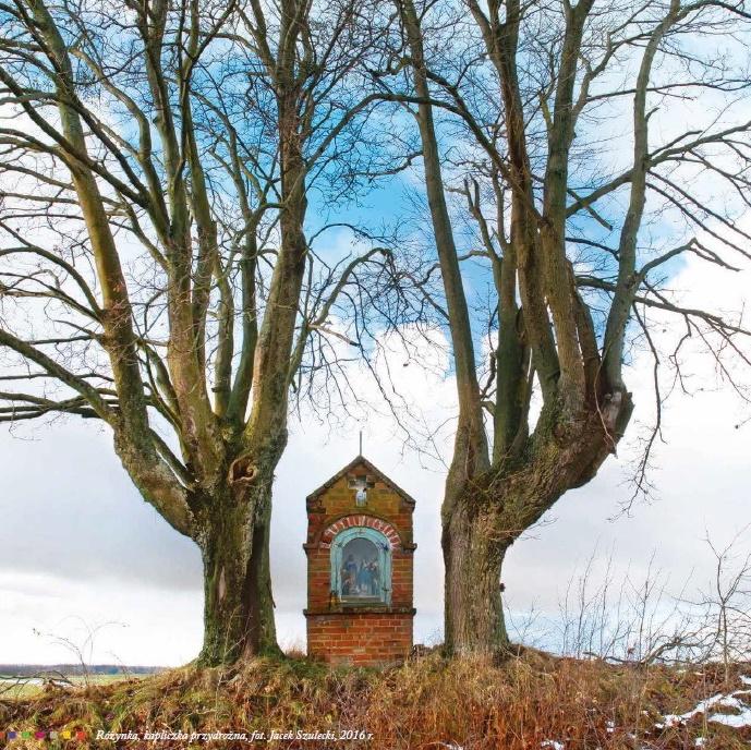 Zdjęcie przedstawia przydrożną kapliczkę obok pola w miejscowości Różynka. Kapliczka po obu stronach otoczona jest dwoma drzewami.