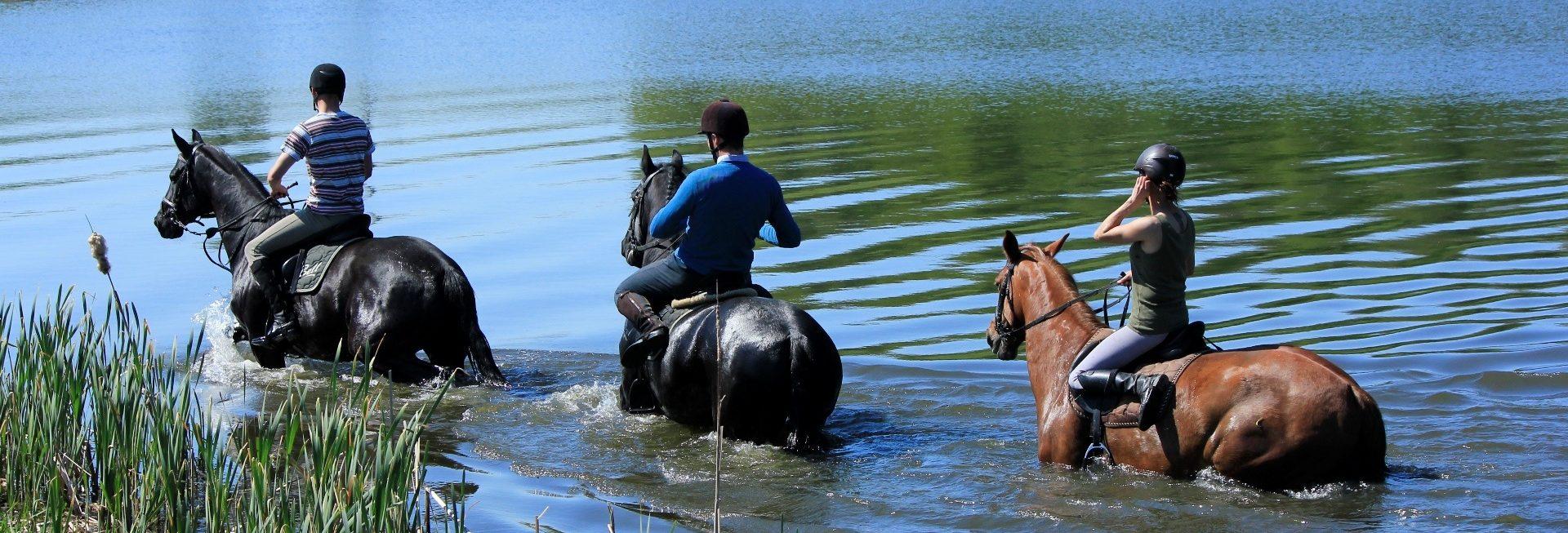 Zdjęcie przedstawiające trzech jeźdźców jadących na koniach brzegiem jeziora ze stadniny w Pałacu w Galinach.