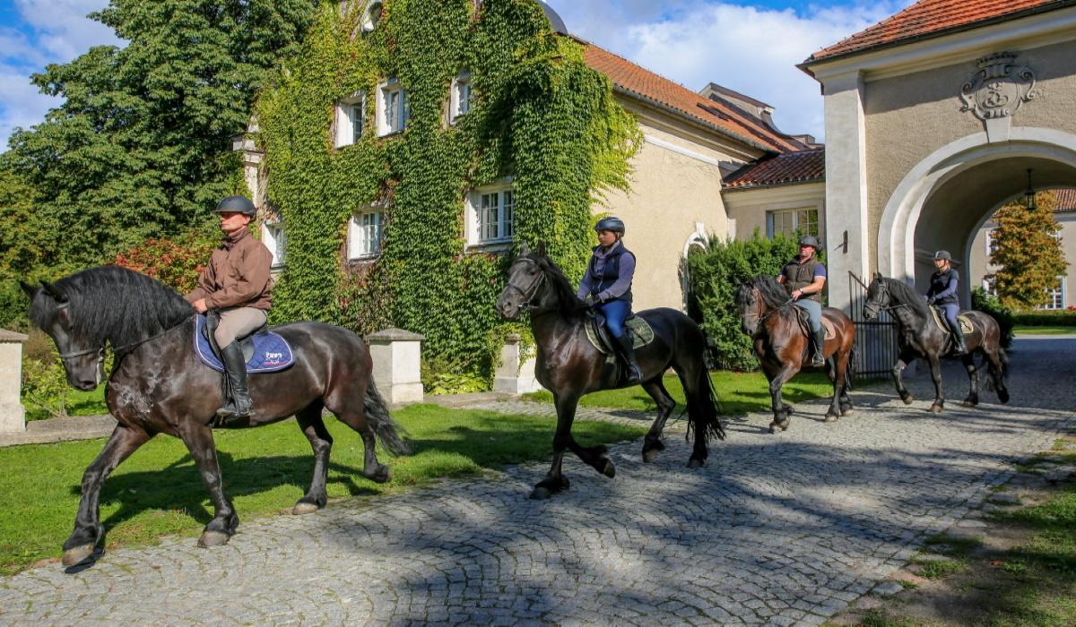 Zdjęcie przedstawiające czterech jeźdźców jadących na koniach ruszających z Pałacu w Galinach.