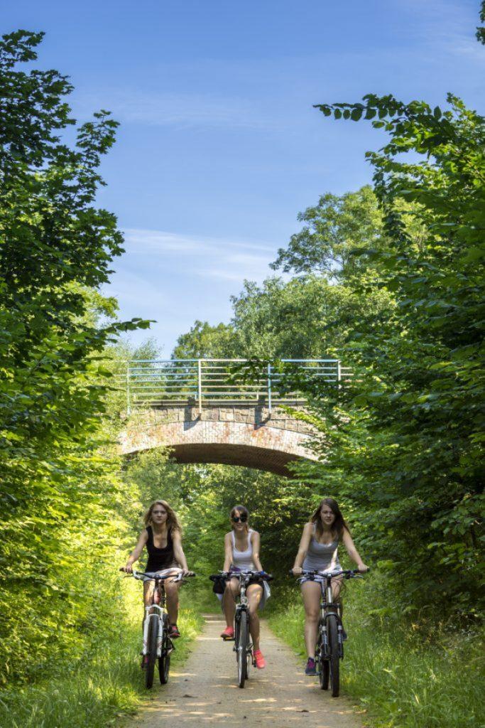 Zdjęcie przedstawia szutrową ścieżkę rowerową relacji Węgorzewo - Ogonki, na której obok siebie jadą trzy rowerzystki ubrane w letnie sportowe stroje.