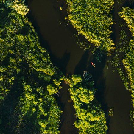 Panorama rzeki.