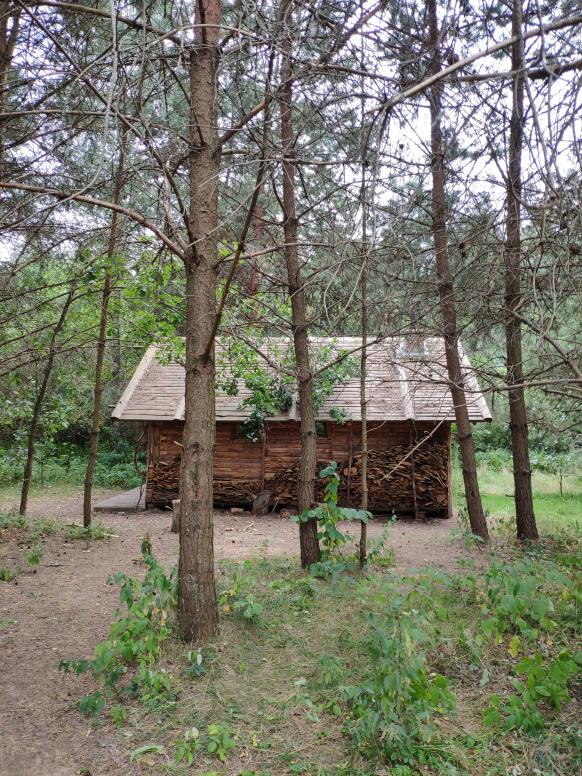Republika Ściborska - chatka w lesie.