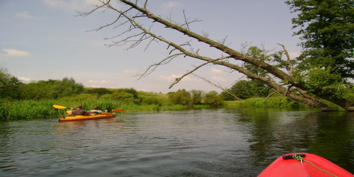 Spływ rzeką Łyną. Na zdjęciu widzimy płynący kajak po rzece Łynie z dwiema osobami z perspektywy drugiego kajaka.
