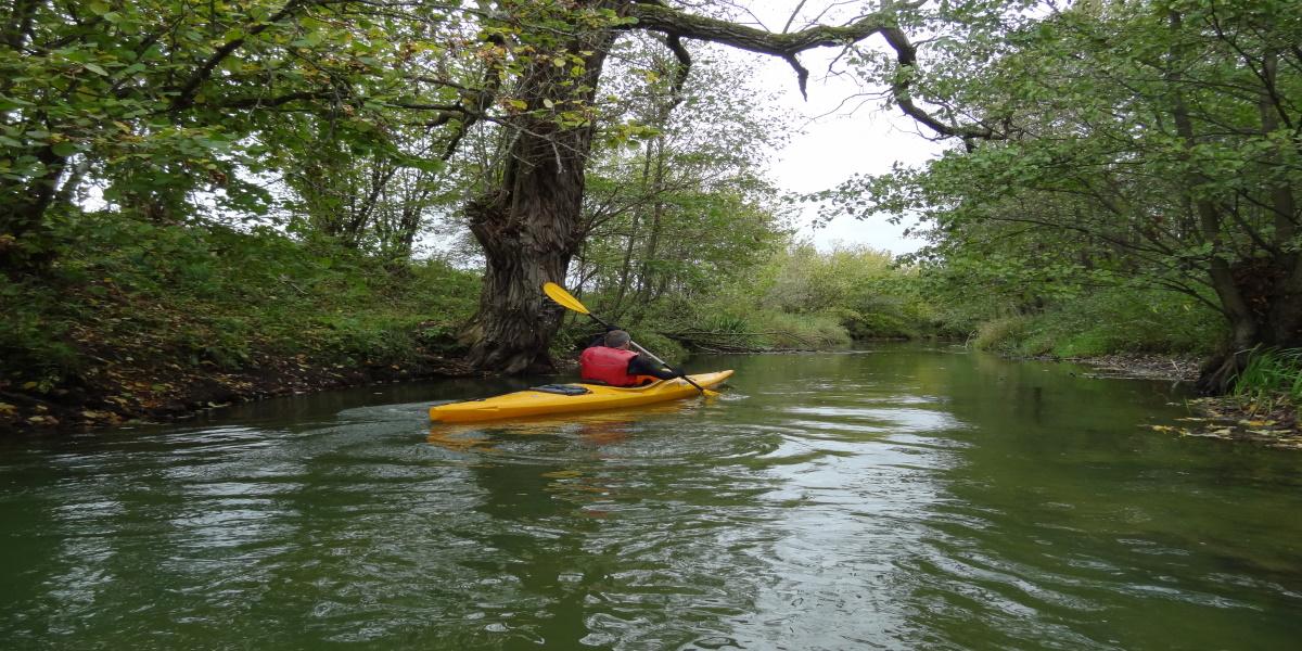Kajakarz płynący po rzece Łyna latem.
