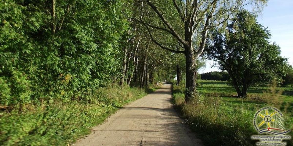 Ścieżka rowerowa wokół jeziora Ryńskiego i Tałty. Na zdjęciu odcinek ścieżki - droga piaszczysta, Krzyżany - Wejdyki, do drogi krajowej nr 59.