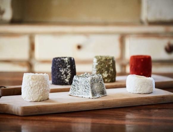 Na zdjęciu sześć owczych serów o różnych kształtach i kolorach wyprodukowanych w Gospodarstwie Owczarnia Lefevre położonym we wsi Kiersztanowo.
