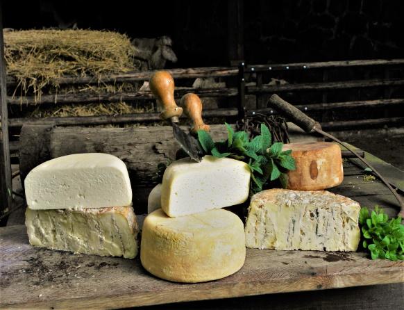 Na zdjęciu sery owcze typu fermier wyprodukowane w Ranczo Frontiera w Warpunach.