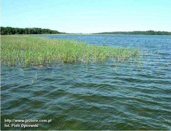 Widok jeziora Mamry.