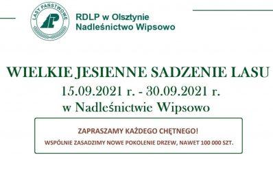 Plakat graficzny zapraszający do Nadleśnictwa Wipsowo na Wielkie Jesienne Sadzenie Lasu - Nadleśnictwo Wipsowo 2021.